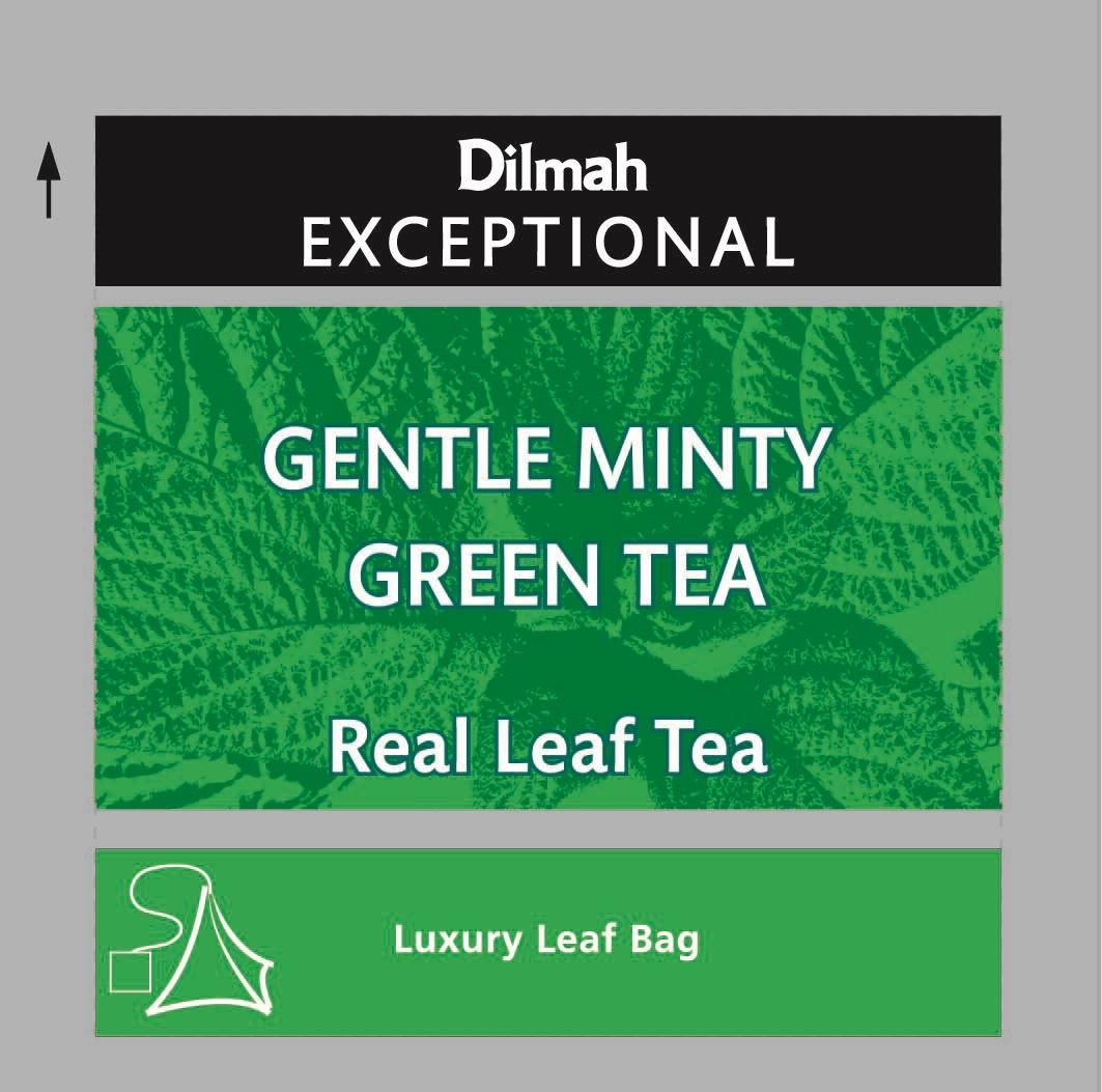 Gentle Mint Green Tea zöld tea 50x2g